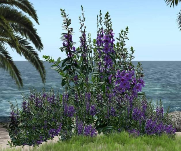 CJ Flower Purple dragon - 2 Shapes