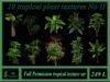 10 tropical plant textures No II