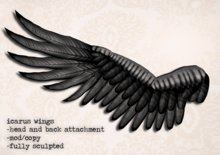 Icarus Wings (black version) by Flightless