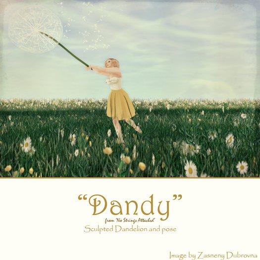 'NSA' - Dandy