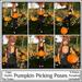 Magnifique - Pumpkin Picking (Single Poses)