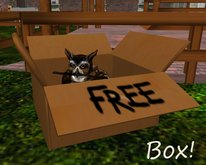 Animal Cardboard Box (with FREE on it)