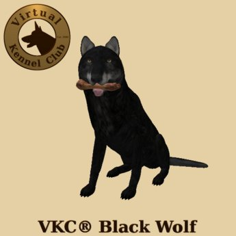 VKC® Black Wolf - Artificially Intelligent (AI) Trainable Wolf - No Food Required - Virtual Kennel Club Dogs