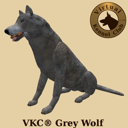 VKC® Grey Wolf - Artificially Intelligent (AI) Trainable Wolf - No Food Required - Virtual Kennel Club Dogs
