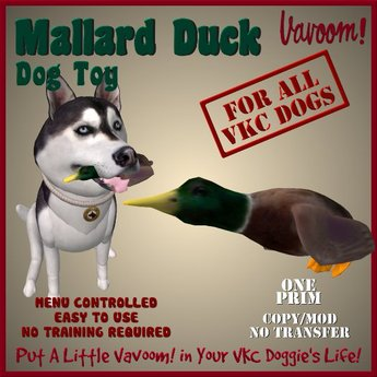 Mallard Duck Pet Toy by Vavoom! Boxed - Toys and Accessories for Virtual Kennel Club (VKC®) Pets - No Training Required