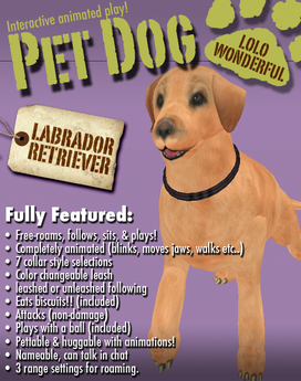 The Labrador Retriever: Animated Pet Dog