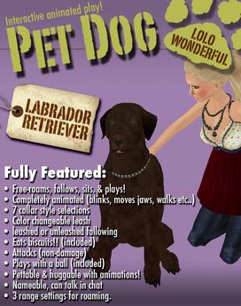 Chocolate Labrador Retriever - Animated Pet Dog