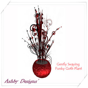 Funky Goth Plant