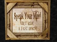 Speak Your Mind - But Ride a FAST Horse !
