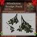 Mistletoe Sculpt Pack, Sculpted Holiday Plant, Christmas Decoration, 2 Sculpty Maps & 6 Textures Full Perms