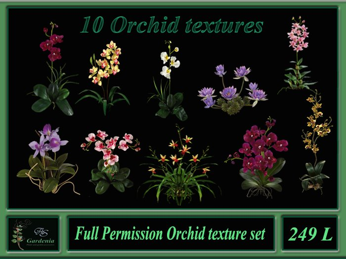 10 Orchid textures