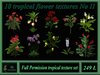 10 tropical flower textures No II