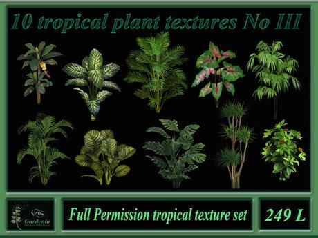 10 tropical plant textures No III