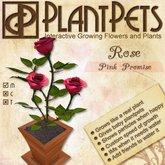 PlantPet Seed [Rose *Pink Promise*]