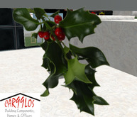 Christmas mistletoe