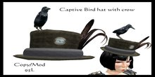 Captive Bird Hat with crow (boxed)