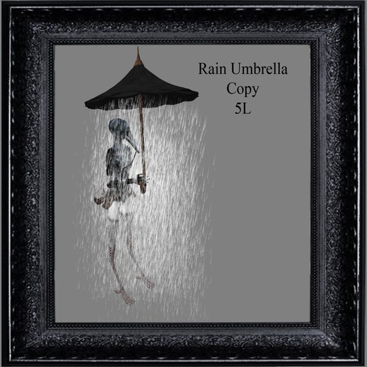 Rain Umbrella  (boxed)