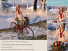 {what next} Christmastime Bicycle Pose Prop