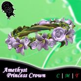 .!CN!. Amethyst Princess Crown