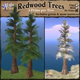 *LightStar- RedWood Trees