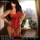 ~Blacklace~ Amor: Red Embroidery Lingerie ONLY