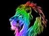 Great poster texture leon de colores-1024x768