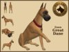VKC® Fawn Great Dane -Artificially Intelligent (AI) Trainable Dog- No Food Required - Virtual Kennel Club - Pathfinding