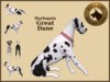 VKC® Harlequin Great Dane - Artificially Intelligent (AI) Trainable Dog -No Food- Virtual Kennel Club Dogs - Pathfinding