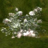 crystal rose Rose quartz