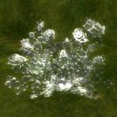 crystal rose Rock crystal