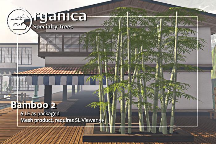 [ Organica ] Bamboo 2