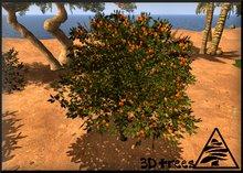 Orange tree 9 prims MODIFY TRANSFER