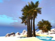 Palm tree - pack of 6 pcs M/T