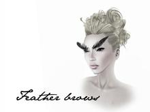 Boudoir -Feather Brows