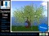 Daydreamer Tree - Yellow