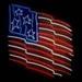 Neon American Flag Sign