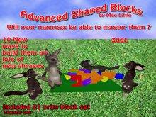 Meeroo Shaped Blocks