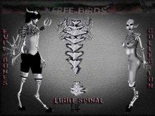 ~~FREE-BIRDS~~ box EVIL BONES  LIGHT Female Spinal set