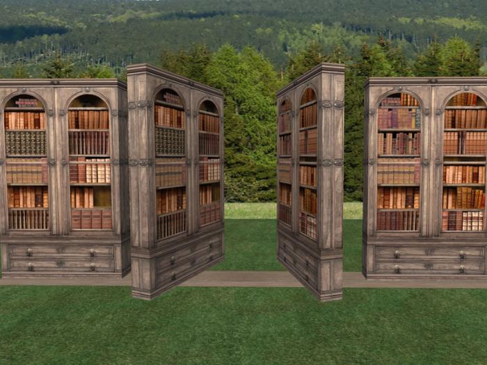 Dats Deluxe Secret Bookcase Door