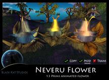 BKS Plants -  Neveru Flower  (Boxed)