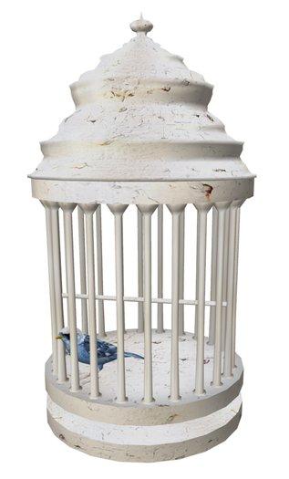 Passarim bird cage - Abune
