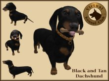 VKC® Dachshund - Artificially Intelligent (AI) Trainable Dog - No Food Required - Virtual Kennel Club Dogs