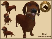 VKC® Red Dachshund - Artificially Intelligent (AI) Trainable Dog - No Food Required - Virtual Kennel Club Dogs