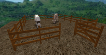 Small Corral for Your Horses & Breedabulls, Oak texture to fit your Ranch or Farm