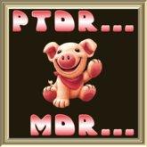 POOFER PTDR-MDR