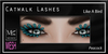 Miamai_MESH Catwalk Lashes_LikeABird Peacock