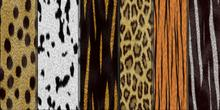 20 Pack Animal Skin Textures