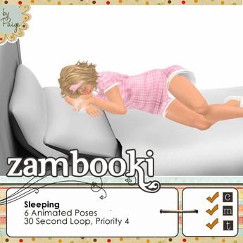 Zambooki Animations - 6 Sleeping Animations