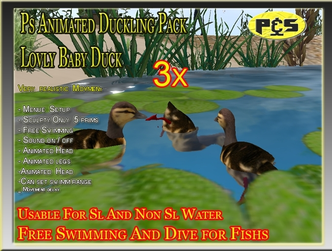 Ps Baby Duck Free Swiming Duckling Bird Animal