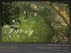 Skye faery ring 6